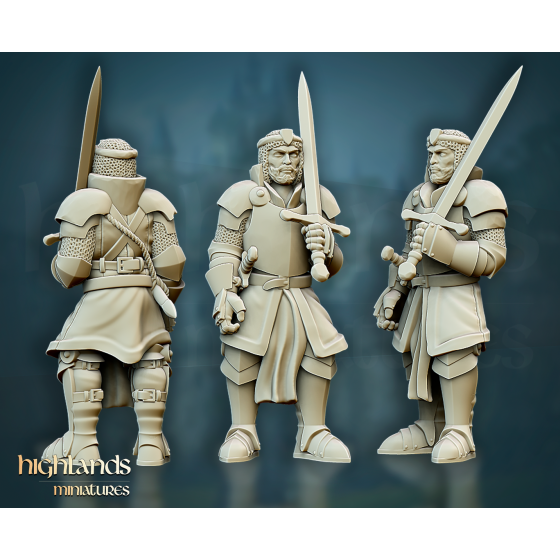 Questing Knight Captain - Rycerz Kapitan