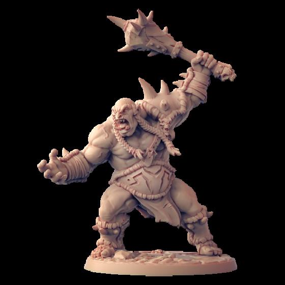 Ogr Wojownik B