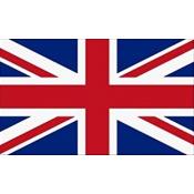 Wielka Brytania (Great Britain) Bolt Action (10)