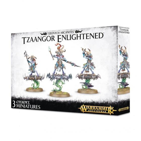 Tzaangor Skyfires / Enlightened